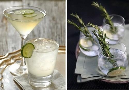 Gin tonic garnituur