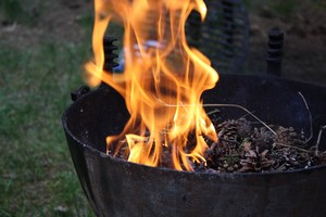 bbq-trends-2015