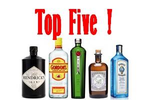 Gin Top 5