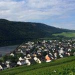 De Moezelstreek: logeren en wijn proeven