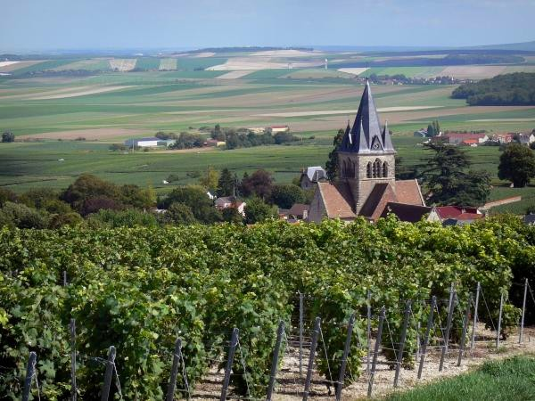 alle dorpen van de champagnestreek