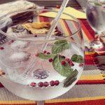 wat is de beste gin