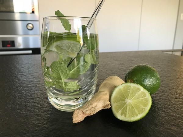 sodastream recepten